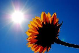 6 Jesus-Sunshine
